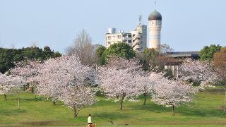 緑豊かな春日公園